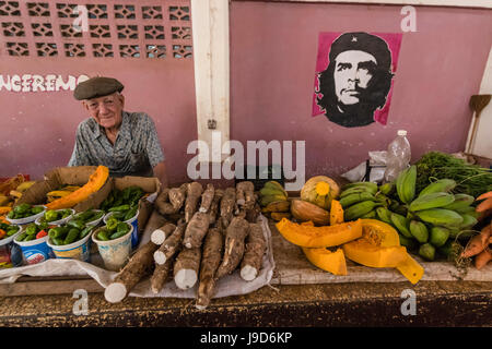 Fruit and vegetables for sale by private vendor at the Mercado Industrial in Cienfuegos, Cuba, West Indies, Caribbean - Stock Photo