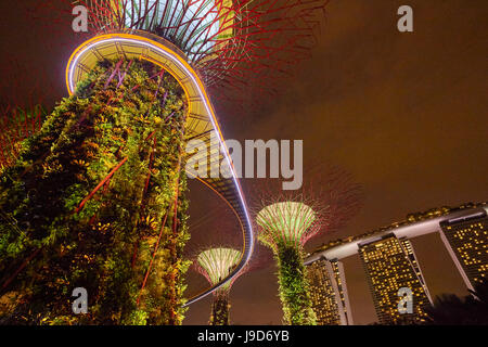 Garden Rhapsody music and lights show in the Supertrees at Gardens by the Bay, Singapore, Malaysia, Southeast Asia, - Stock Photo