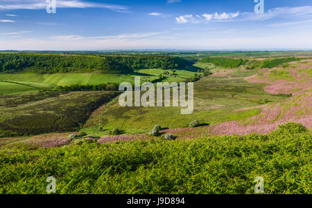 The North York Moors with view of a natural depression, farmland, moorland, and vegetation on a fine spring morning - Stock Photo