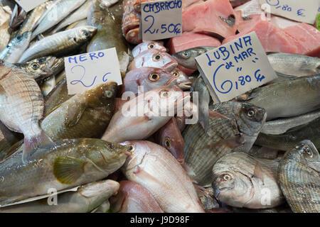 Fresh fish in the Mercado Central de Abastos food market, Jerez de la Frontera, Cadiz province, Andalucia, Spain, - Stock Photo