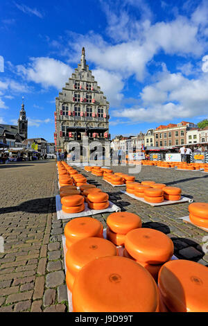 Cheese Market in Gouda, South Holland, Netherlands, Europe - Stock Photo