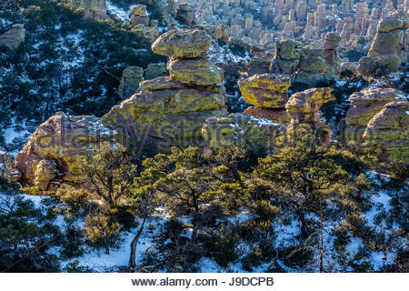 These rhyolite formations in Chiricahua National Monument are spotlighted by the late Winter sun. - Stock Photo