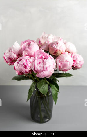 Pink peony flower on a gray background.copy space - Stock Photo