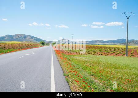 Road to Los Cortijos. Fuente el Fresno, Ciudad Real province, Castilla La Mancha, Spain. - Stock Photo