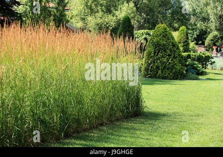A finely manicured lawn in a beautiful garden - Stock Photo