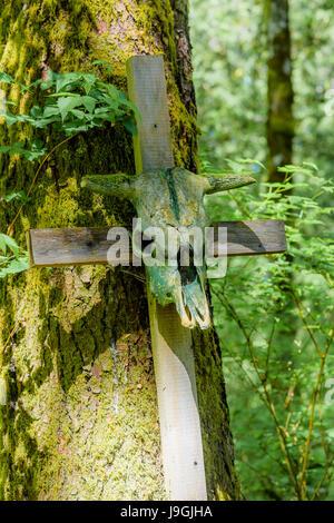 Wacky Woods installation by eccentric artist George Sawchuk, Fanny Bay, British Columbia, Canada. - Stock Photo