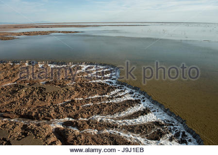 Ocean high tide waters downcutting tidal flat sand on the way back to the Sea of Cortez. - Stock Photo