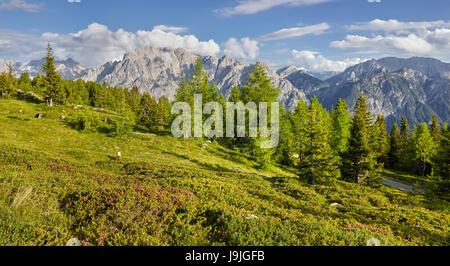 View of the Hochstein to the Lienzer Dolomiten, Osttirol, Tyrol, Austria - Stock Photo
