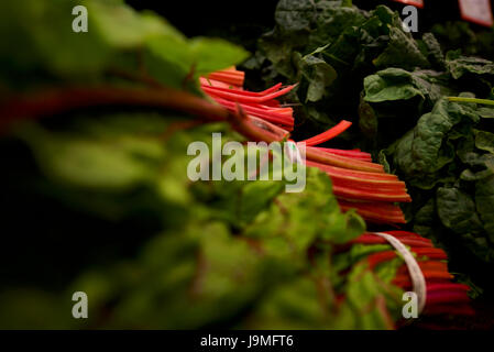 Bunches of spinach for sale in a vegetable market.