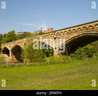 bridge, blue, tree, trees, stone, bridge, shine, shines, bright, lucent, light, - Stock Photo