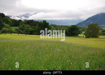 mountains, alps, hike, go hiking, ramble, south tyrol, switzerland, mountain, - Stock Photo