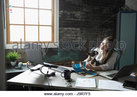Creative businesswoman working with dog in lap - Stock Photo