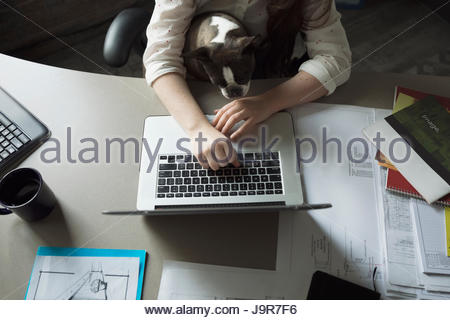 Creative businesswoman working at laptop with dog in lap - Stock Photo