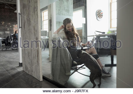 Creative businesswoman with laptop watching dog in office - Stock Photo