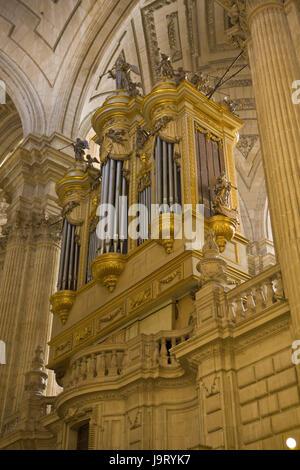 Spain,Andalusia,Jaen,cathedral,church organ,building,interior shot, - Stock Photo