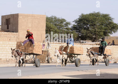 Mauritania,Nouakchott,men,donkey carts,costs transport,no model release,Africa,West Africa,town,capital,economy,building,houses,architecture,person,locals,turban,transport,carts,donkeys,animals,benefit - Stock Photo