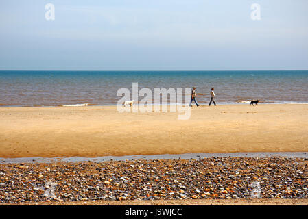 A couple walking dogs on the beach at the North Norfolk coastal resort of Mundesley-on-Sea, Norfolk, England, United - Stock Photo