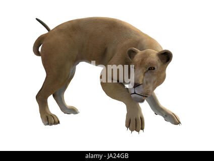 danger, big, large, enormous, extreme, powerful, imposing, immense, relevant, - Stock Photo