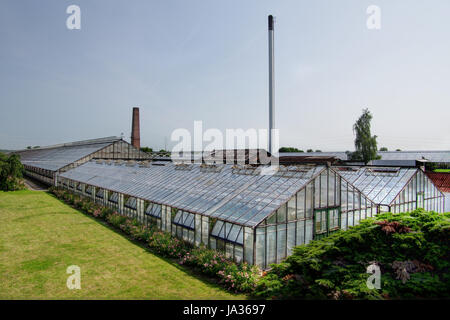 summer, summerly, hamburg, conservatory, glasshouse, flower, flowers, plant, - Stock Photo