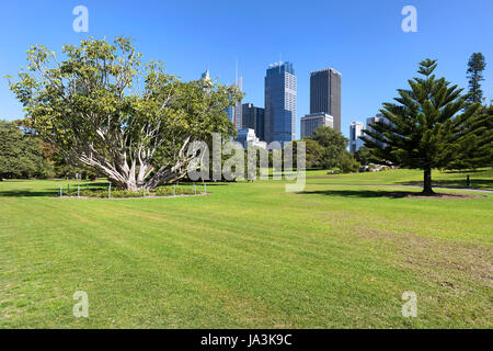 View Of The Sydney Skyline From The Royal Botanic Garden.   Stock Photo