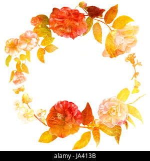 A vintage style decorative wreath with watercolor drawings of camellias and quince, with butterflies, on white background, - Stock Photo