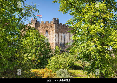 The old keep of Durham Castle, now part of Durham University, surrounded by trees in full leaf. - Stock Photo