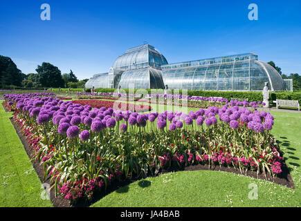 The Palm house, Kew Gardens. - Stock Photo