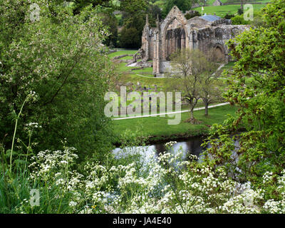 Bolton Priory Ruins in Spring from a Viewpoint across the River Wharfe Bolton Abbey North Yorkshire England - Stock Photo