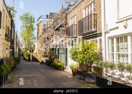 Elegant houses in a small exclusive mews with cobble stone street in South Kensington, London, UK - Stock Photo