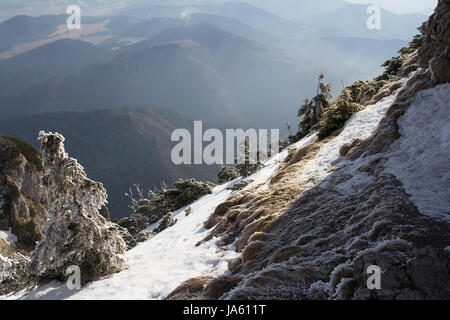 Steep forested snow covered alpine slope overlooking a vista of mountain peaks and valleys below in a scenic winter - Stock Photo