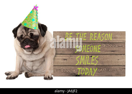 bad tempered pug puppy dog with wooden sign with text be the reason someone smiles today, isolated on white background - Stock Photo