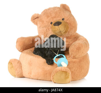 blue, model, design, project, concept, plan, draft, american, bed, brown, - Stock Photo