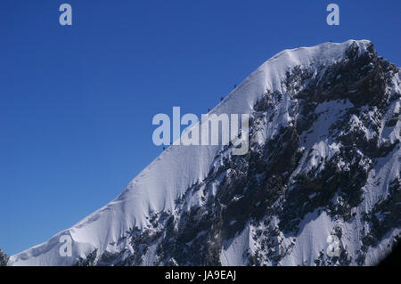 climbers at 4545m dom in valais - Stock Photo