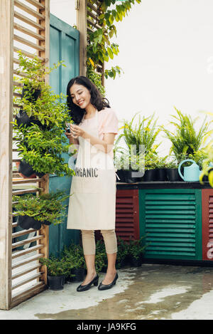 Young professional woman in apron cut green bush clippers in the garden - Stock Photo