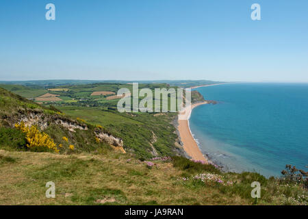 View from the top of Golden Cap, the highest peak on the south coast, looking east along the Jurassic Coast passed - Stock Photo