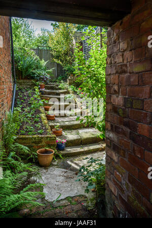 An old back yard garden with stone steps. - Stock Photo