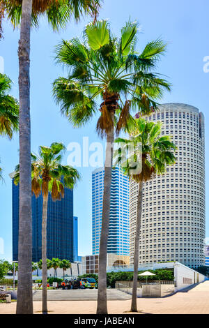 View of the Rivergate Tower building and other skyscrapers in downtown Tampa, FL surrounded by the Tampa Riverwalk, - Stock Photo