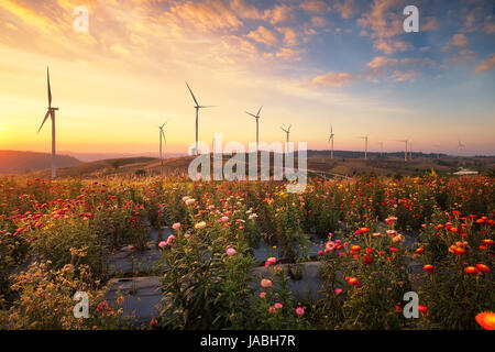 Windmills for electric power production on mountain - Stock Photo