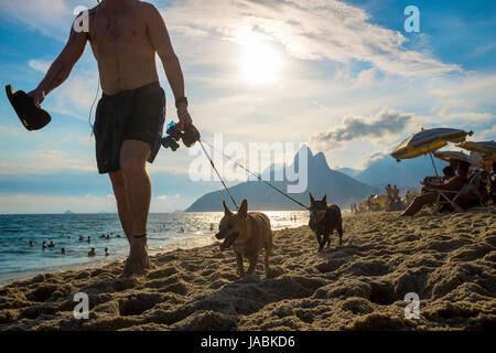RIO DE JANEIRO - FEBRUARY 7, 2017: Man walking with two small dogs on Ipanema Beach with the sunset behind Two Brothers - Stock Photo