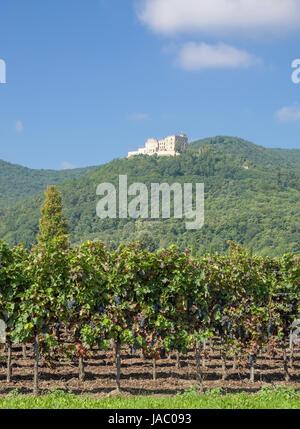 hambach castle on the german wine street - Stock Photo