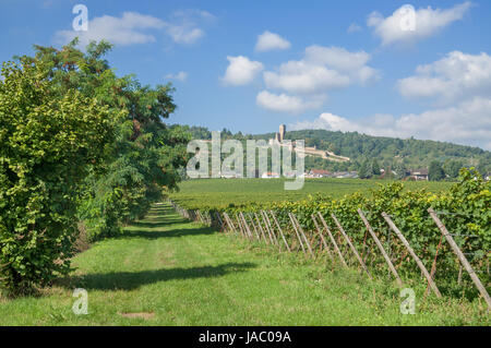 the famous wine town of wachenheim on the german wine street - Stock Photo