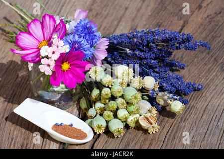 Sommerernte von Lavendelblüten, Sommerblumen, Mohnkapseln und Mohnsamen in einer kleinen Porzellanschale auf einem - Stock Photo