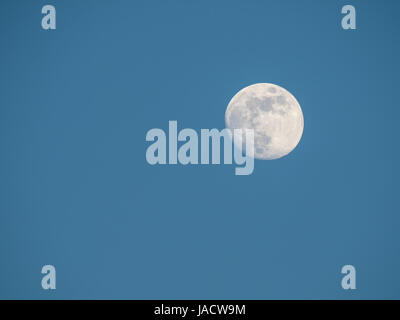 near full moon and cloudless blue sky in springtime - Stock Photo