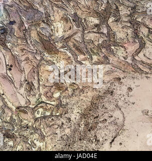 Dry Martian Riverbed Basin Texture - Stock Photo
