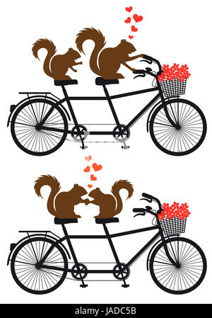 squirrel couple in love on tandem bicycle with red hearts, vector illustration for wedding invitation, Valentine's - Stock Photo