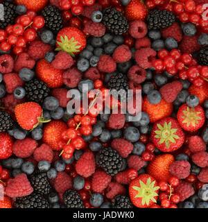 Beeren wie Erdbeeren, Heidelbeeren, Himbeeren, Johannisbeeren und Brombeeren bilden einen Hintergrund - Stock Photo