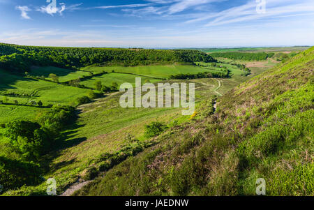 Geological depression in the North York Moors with view of farmland, moorland, and vegetation on a fine spring morning - Stock Photo