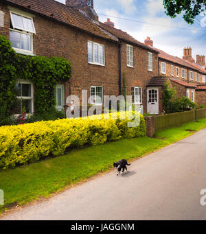 Village street and houses, Sessay, North Yorkshire, UK. - Stock Photo