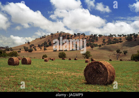 Arable farming country on the Old Gundagai Road near Cootamundra, New South Wales, Australia - Stock Photo