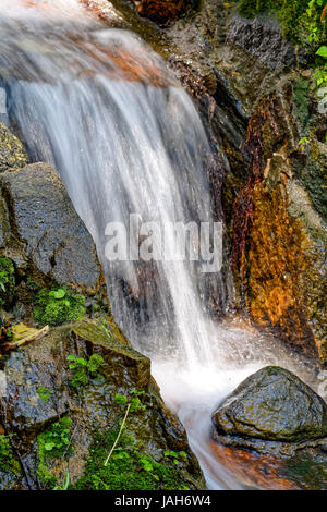 Small stream running through the rocks and vegetation of the rainforest - Stock Photo